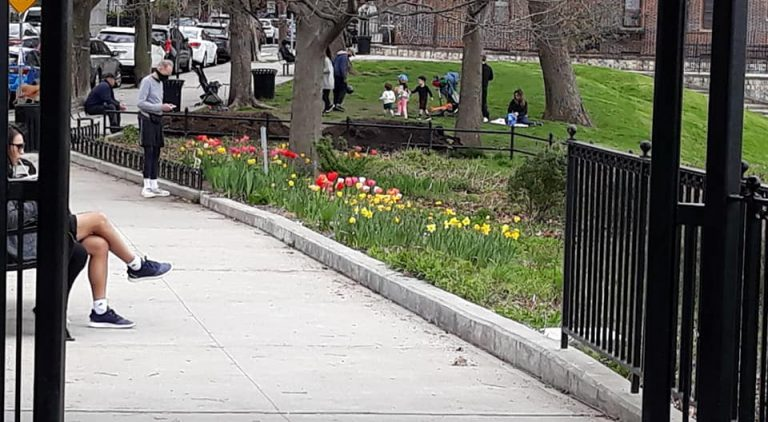 Visitors enjoying the tulips in bloom